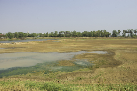 Swamps for tap water production are scarce due to drought.