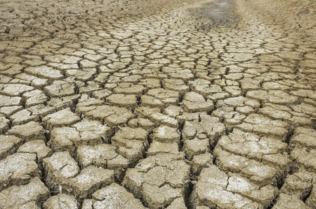 Cracked soil because of drought conditions. Stock Photo
