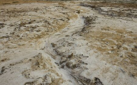 Soil in a rural area in the northeast region of Thailand that has salt stains due to drought
