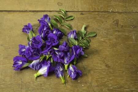 Butterfly pea flower is a blue-purple flower with its distinctive properties: nourishing the hair to shine. Increase the blackness of the eyebrows and maintain healthy eyes