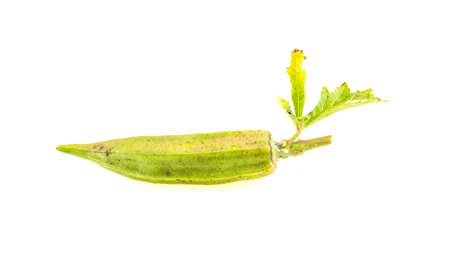 Dried okra isolated on white background 免版税图像 - 160981246