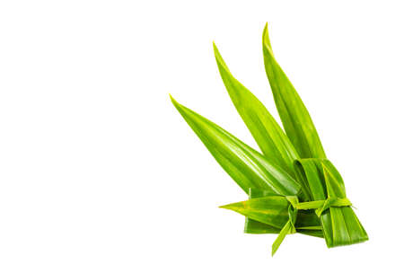 Pandan leaves are plants that Thai people use as herbs and cook dishes such as Thai desserts to have a pleasant aroma.