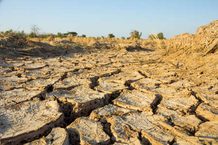 Soil surface is cracked due to drought.