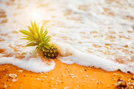 Pineapple on the beach.Tropical summer delights. Fresh pineapple on the beach.Pineapple on hawaii beach with soft wave.Pineapple on soft wave at summer in Hawaii beach.