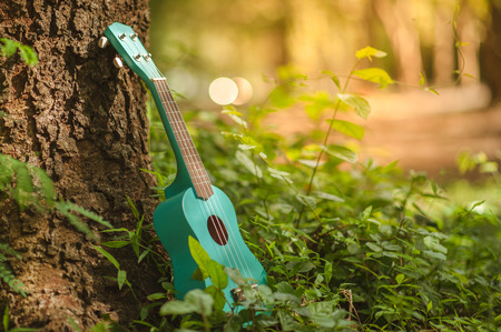 Ukulele guitar at the mountain nature pine forest landscape. Photo depicts musical instrument Ukulele small guitar in outdoor natural green background. Strings close up.