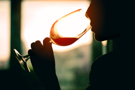 Silhouette Beautiful Young Woman Drinking Wine