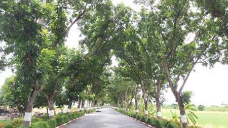 gardent road Stock fotó