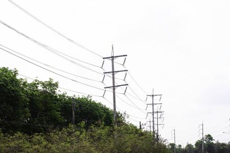 Transmission line of electricity to rural with green tree, High voltage electricity pole with nature background 스톡 콘텐츠