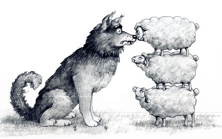 satire: sheep on one another are at the height of a wolf and scare