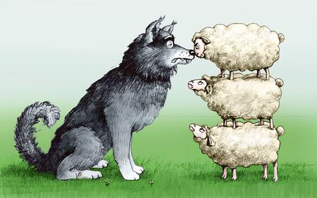 la union hace la fuerza: ovejas en uno de otro, a la altura de un lobo y susto