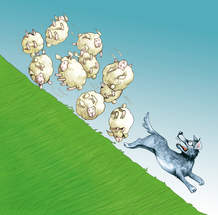 A sheep of rolling sheep on a hill sweeps a wolf in flight