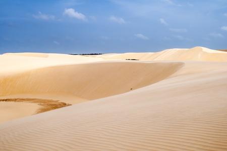 atilde: Sand dunes of the Lencois Maranheses National Park in Brazil.  Stock Photo