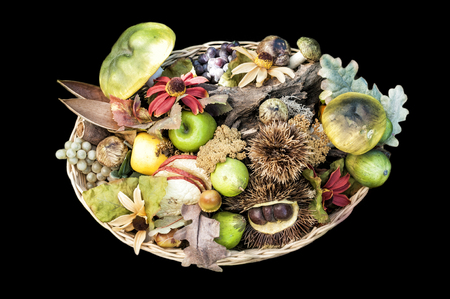 grapes and mushrooms: Decorative basket of fake autumn fruits on a black background