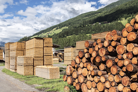Stacks of pine and fir lumber in a sawmill on the Italian Alps Stock Photo