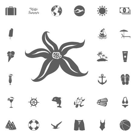 starfish icon. Hello summer icon. Beach icon set. travel icons set. Vettoriali