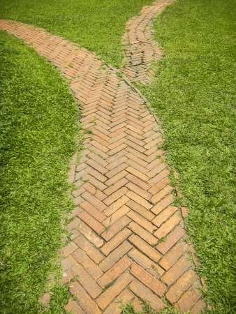 Brick walkway in the park on green grass photo