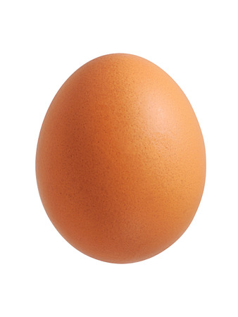 Close up of chicken egg isolated on white background 写真素材