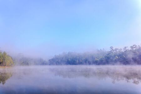 peacefulness: Mist on a lake at dawn with tree reflected in the calm water.