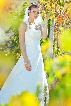 Beautiful bride on the nature. High quality photo.