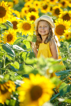 Child in a sunflower field. High quality photo.