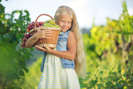 Cute baby harvesting fruits on the farm. High quality photo.