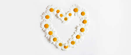 Heart made of daisy flowers. Daisies Symbol of family, love and fidelity. Banner