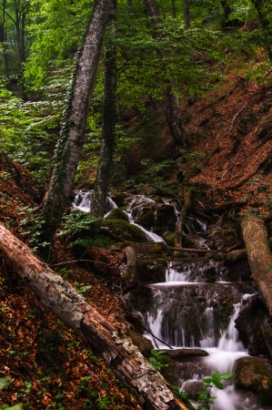 Forest waterfall in motion in Crimea, Ukraine photo