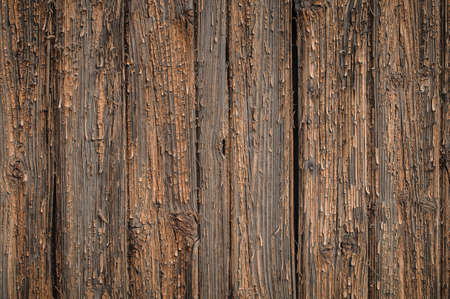 Wooden board textured surface with small details Stock Photo - 18002183