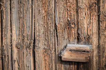 Wooden board textured surface with small details