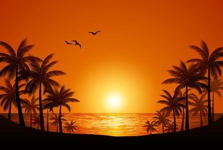 sunset on the beach: Palm trees