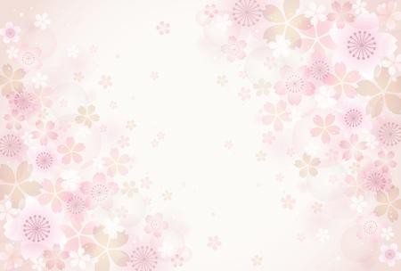 fleur cerisier: Sakura fleurs fond