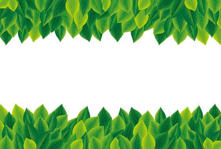 녹색 나뭇잎 프레임 일러스트