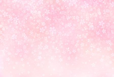 Sakura kwiaty tła