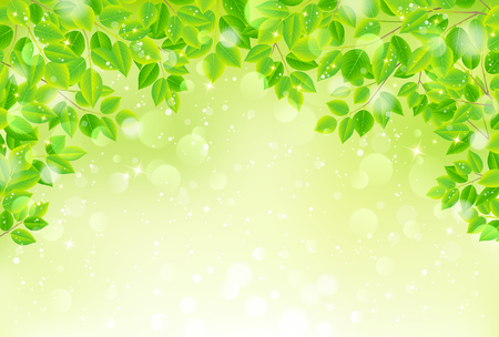 warmness: Green leaves background