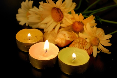 conflagrant: conflagrant candles and camomiles