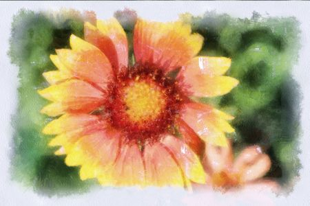 A watercolor picture of a flower photo