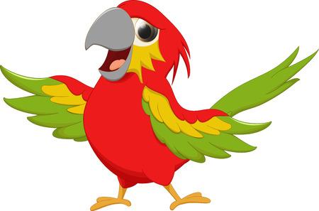 macaw: cute macaw bird cartoon
