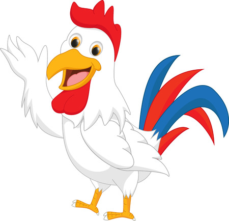 male animal: cute rooster cartoon presenting