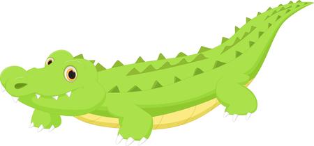 cocodrilo: De dibujos animados cocodrilo