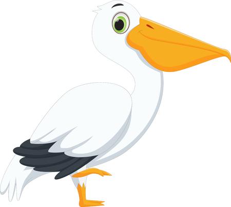 pelican: cute pelican cartoon Illustration