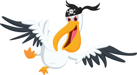 pelican pirate cartoon