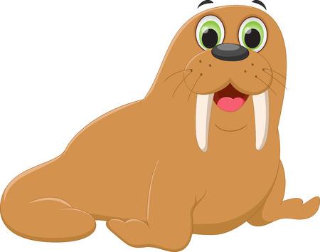 walrus: cute walrus cartoon