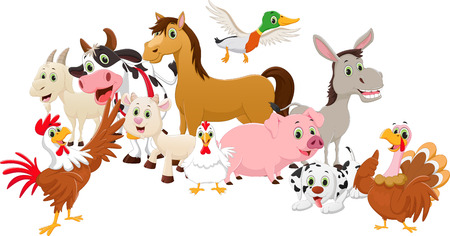 cock duck: cartoon family farms isolated on white background
