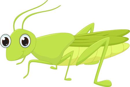 kiddish: Cute grasshopper cartoon Illustration