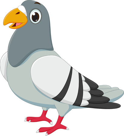 schattige duif cartoon