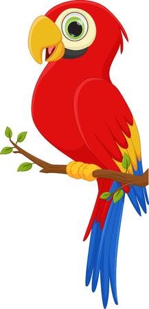 guacamaya caricatura: guacamaya linda historieta del pájaro
