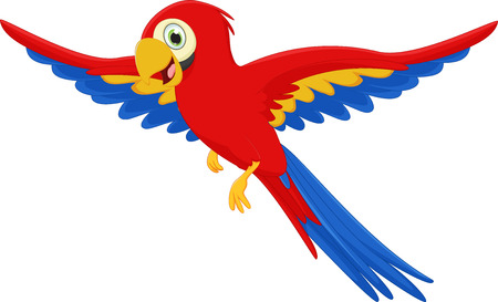 macaw: happy macaw bird cartoon