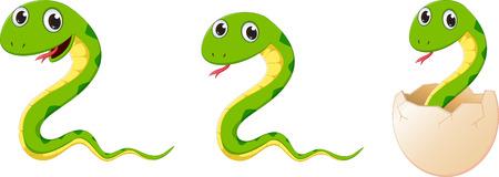 cute snake cartoon Stok Fotoğraf - 61664626