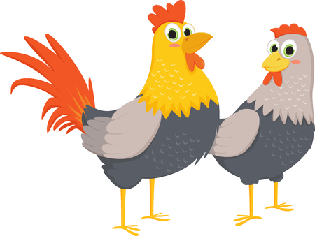 free range: Couple of roosters and hens Illustration