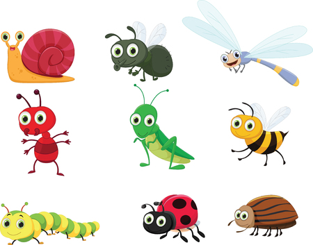 Cute insect collection set like snail, dragonfly and bugs